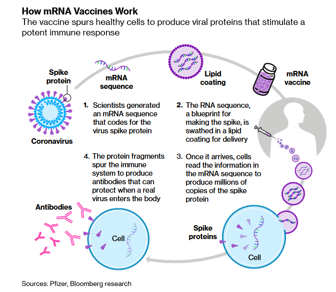 mRNA3